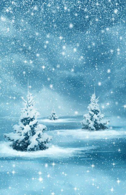Frohe Weihnachten von webbeeren.ch und ein erfolgreiches 2018